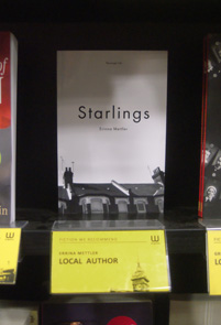 Starlings on the shelf in Waterstones